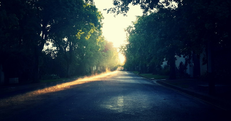 morning-streetZ