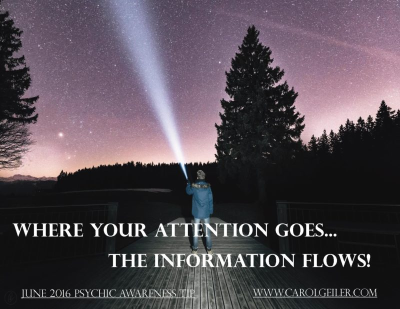 Where Your Attention Goes… The Information Flows!